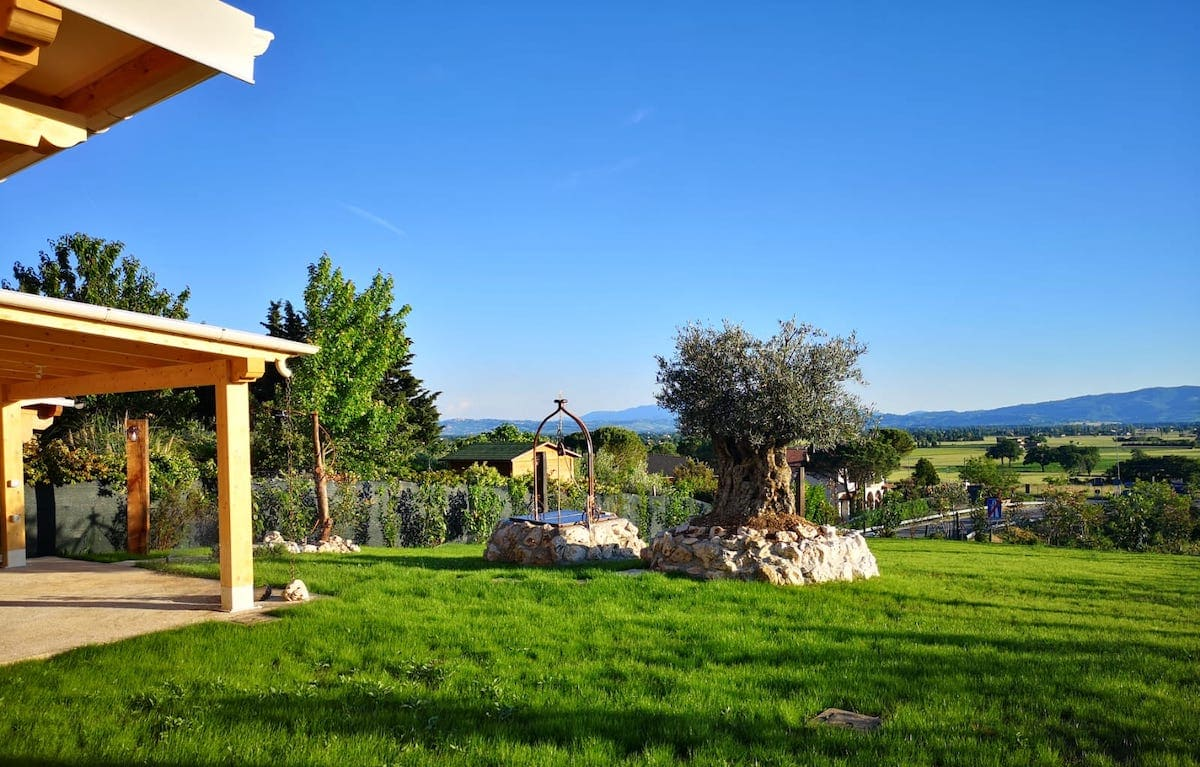 trattamento e manutenzione giardino