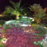 lago balneabile con illuminazione ad immersione