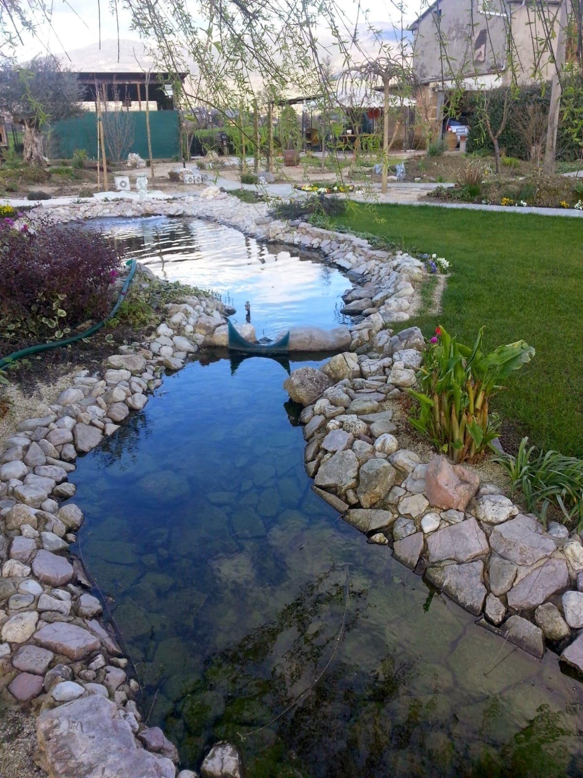 Realizzazione laghi artificiali per carpe koi