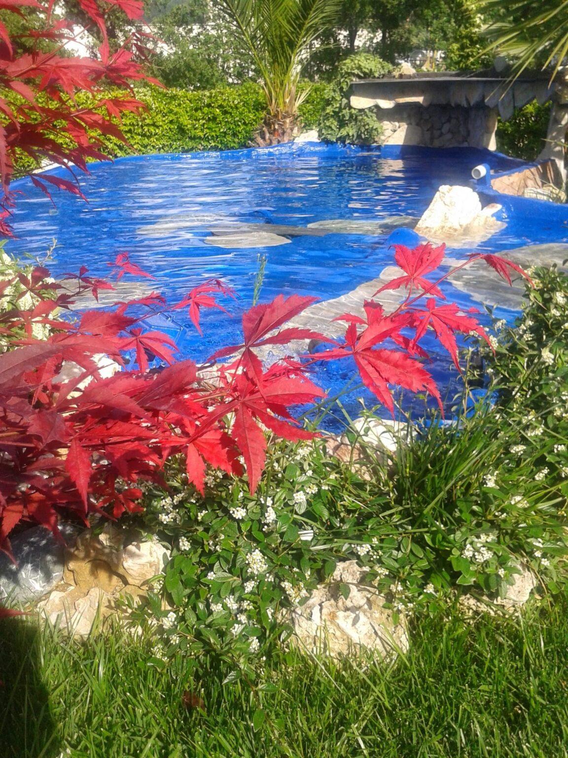 bio fontane balneabili